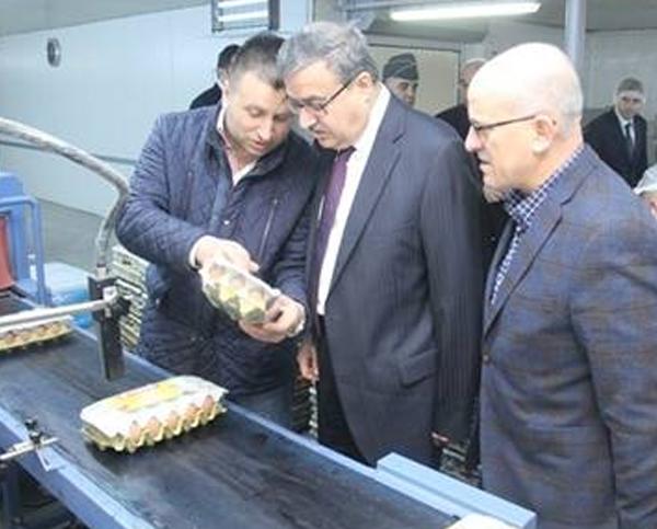 Vali Ali İhsan Su, Kılıçlar Yumurta Tesislerinde İncelemelerde Bulundu